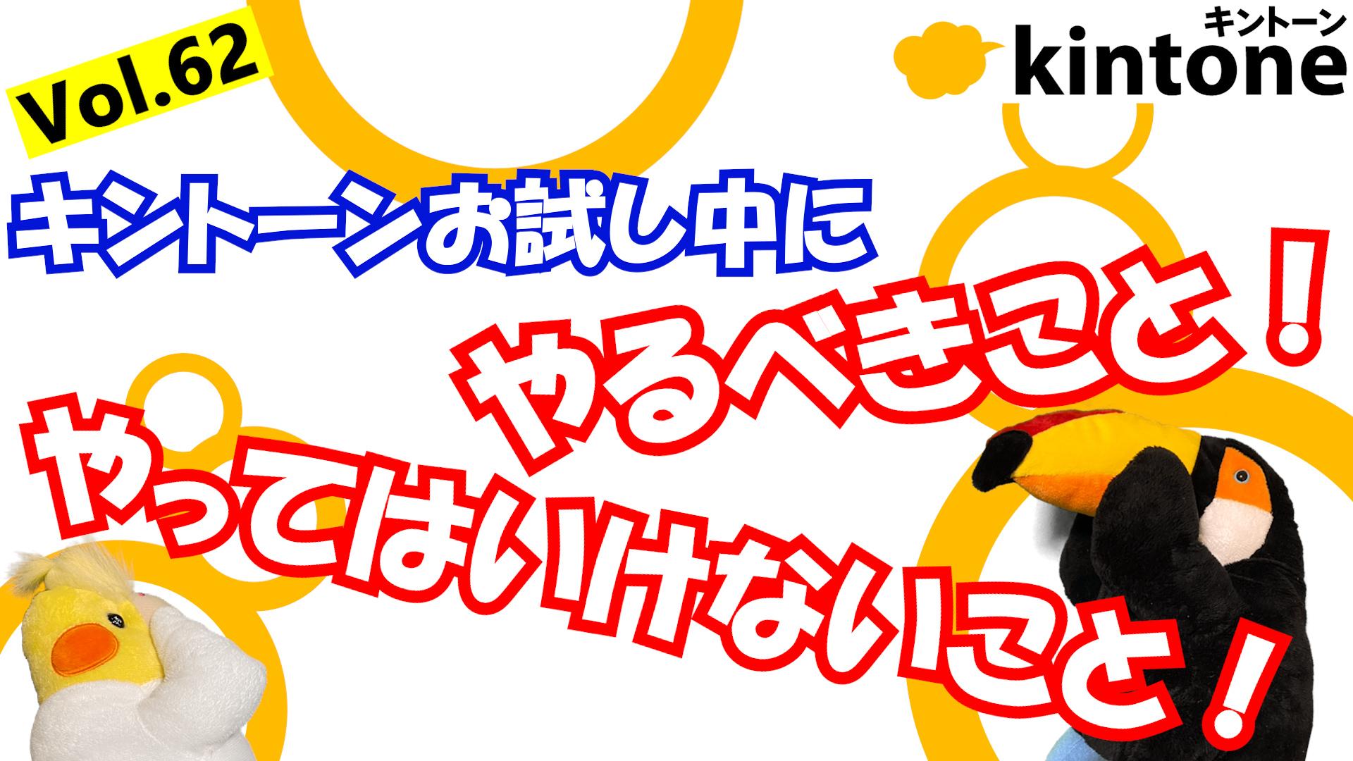 【前編】kintoneコンサルが執筆するお試し期間でやるべきコト!【動画】